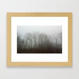 Mistified Framed Art Print