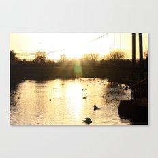 Gold Glow Canvas Print