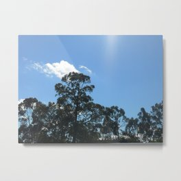 My Photography 02 Metal Print