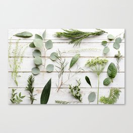 Green Botanical Flowers Canvas Print