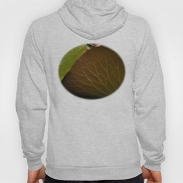 Leaf Veined Hoody