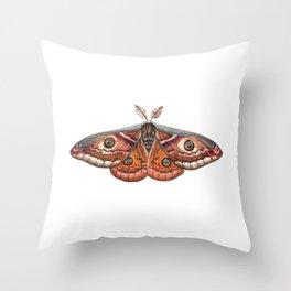Small Emperor Moth (Saturnia pavonia) Throw Pillow