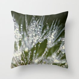 holding jewels Throw Pillow