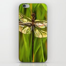 Dragonfly In Brown And Yellow iPhone Skin