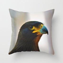 Buzzard Raptor Wild Throw Pillow