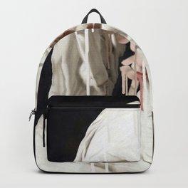 Harmony 6 Backpack