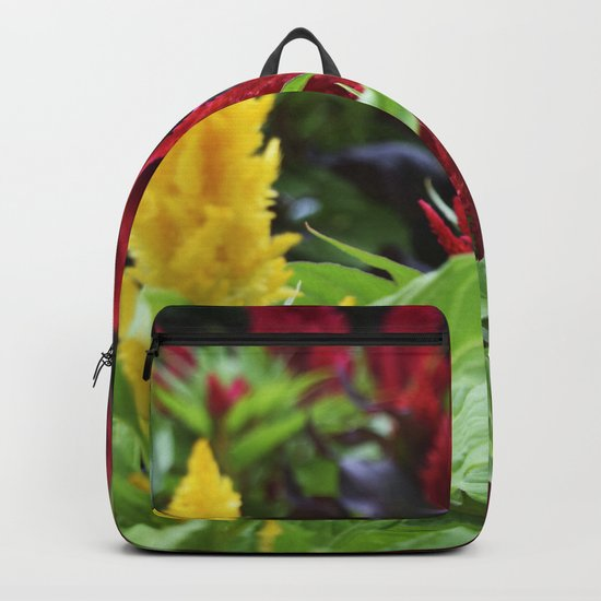 red , yellow, and pink flowers planted in the flower bed Backpack