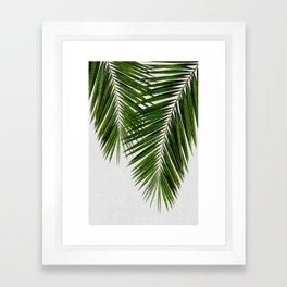 Palm Leaf II Framed Art Print