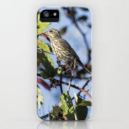Female Purple Finch iPhone Case