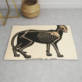 Vintage French zoological board - Cat skeleton Rug