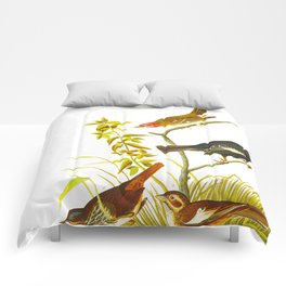 Lark Finch, Prairie Finch, Brown Song Sparrow Comforters