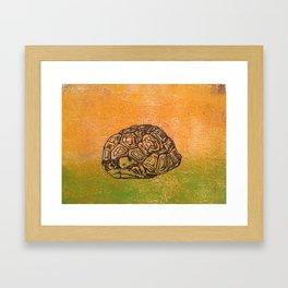Peek-a-boo tortoise Framed Art Print