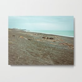 Driftwood Napier Beach Metal Print