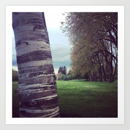 Corvallis Trees Art Print