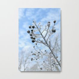 Frozen Branches Metal Print