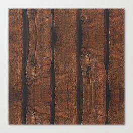 Rustic brown old wood Canvas Print