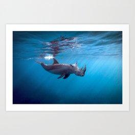 Searhino Art Print