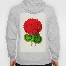 Vintage Scientific Floral Illustration Large Red Flowers Cranesbill Geranium Hoody