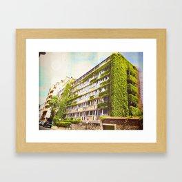 Return of Nature Framed Art Print