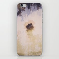 reflexion iPhone & iPod Skin
