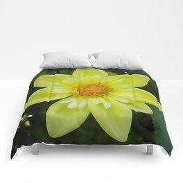 Yellow Tufted Dahlia Comforters