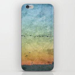 Birds in Flight iPhone Skin