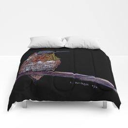 Hummingbird -Frontal View Comforters