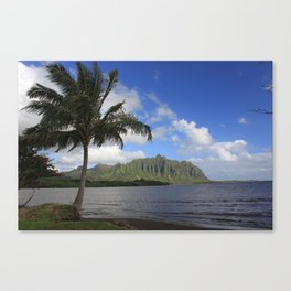 Windward Side of Oahu, hawaii Canvas Print