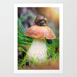Leccinum on grass with snail Art Print
