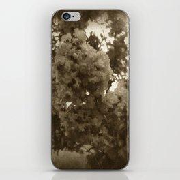 Crape Myrtle Antiqued iPhone Skin