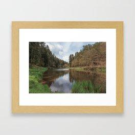 Spring at Soudley Ponds Framed Art Print