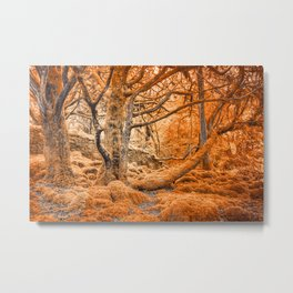 Glowing Amber Forest Metal Print