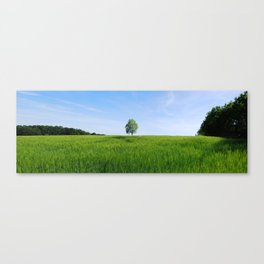 Field and Tree Panorama Canvas Print