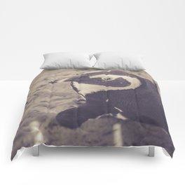 Adorable African Penguin Series 2 of 4 Comforters
