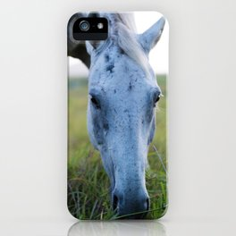 Bluey I iPhone Case