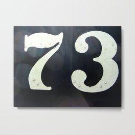 73 Metal Print