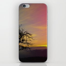 Old tree and colorful sundown panorama | landscape photography iPhone Skin