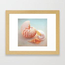 Nautilus collage Framed Art Print