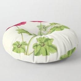 Ivy Leaved Pelargonium Floor Pillow