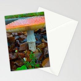 Aminita Muscaria Mushroom Stationery Cards