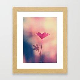 Dust in The Wind Framed Art Print