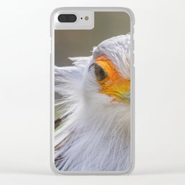 Secretarybird Close up portrait, African bird of prey (Sagittarius serpentarius) Clear iPhone Case
