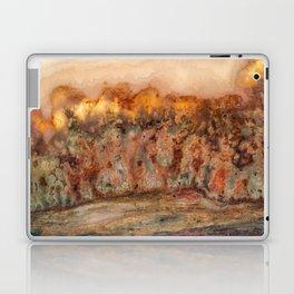 Idaho Gem Stone 37 Laptop & iPad Skin