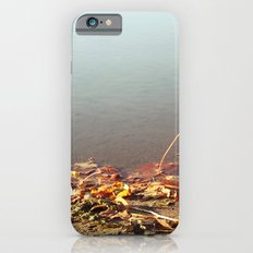 Autumn by the water iPhone 6s Slim Case