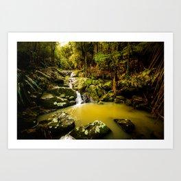 Hidden cascade Art Print
