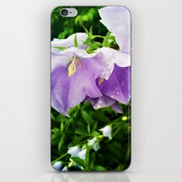 Rain drops in the Garden iPhone Skin