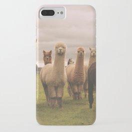 Alpacas at Tio Farm iPhone Case