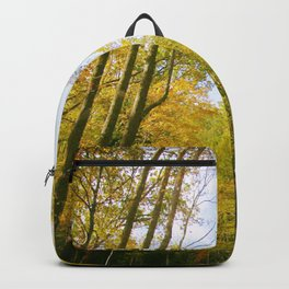 Fall Colors Backpack