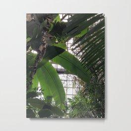 Grids and Organics II Metal Print