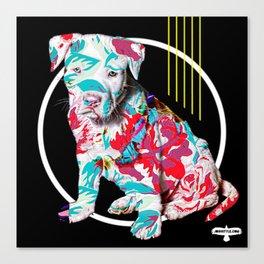 BRAD PITT-BULL Canvas Print